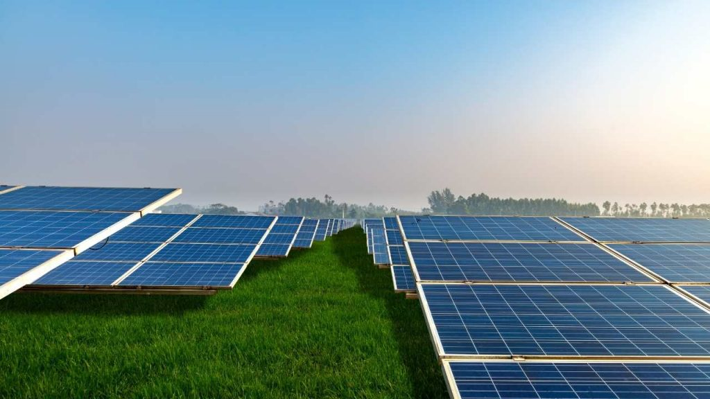 Solar Panels and Solar Cells in Solar Farms