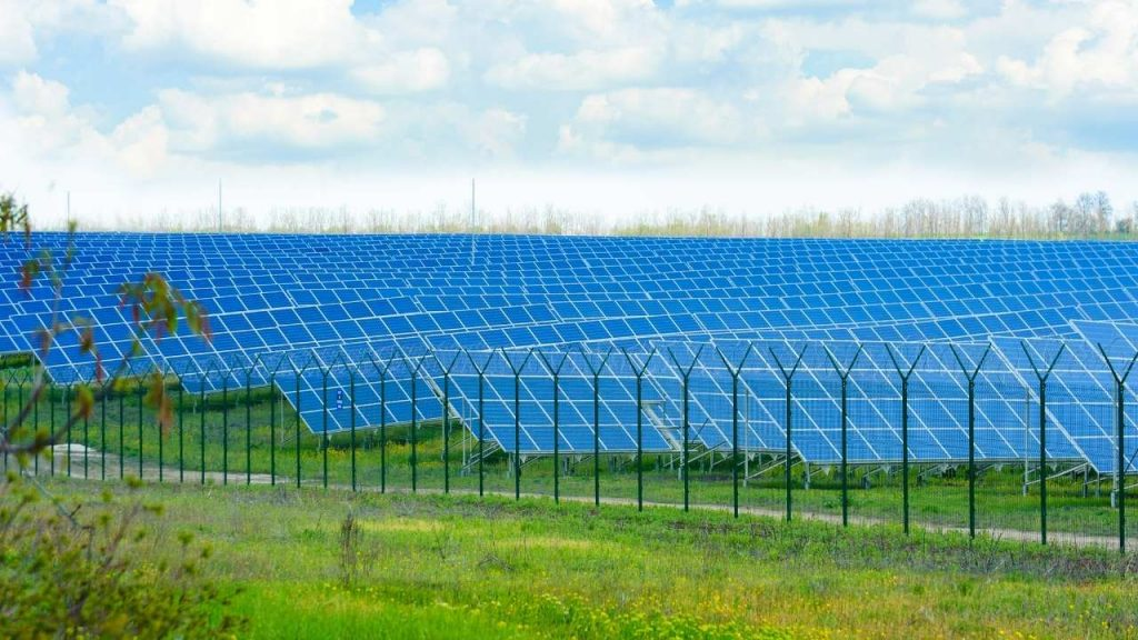 How Big Are Solar Panels in A Solar Farm?