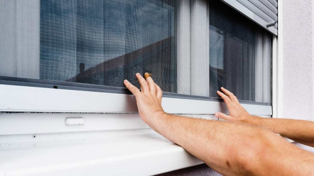 What Should you Choose: A Solar Screen or Window Tint?